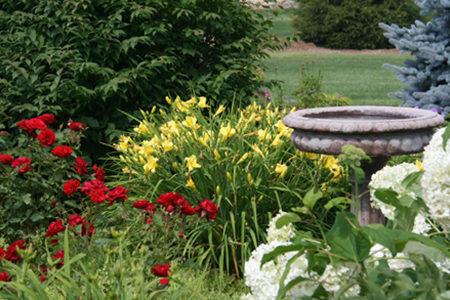 Bird Sanctuary Garden